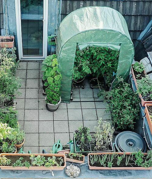 Với tình yêu lớn lao dành cho trồng trọt và làm vườn, Debbie đã trồng rất nhiều loại hoa và rau củ trong các chậu nhỏ đặt xung quanh ban công, đồng thời tạo ra một góc xanh lãng mạn cho không gian sống.