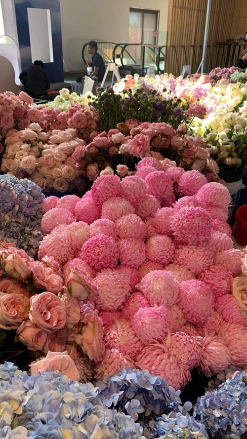 Siêu đám cưới của cặp nhà giàu hứa hẹn sẽ được tô điểm bởi rất nhiều hoa tươi ngoại nhập như hồng Ohara, cúc mẫu đơn, cẩm tú cầu...