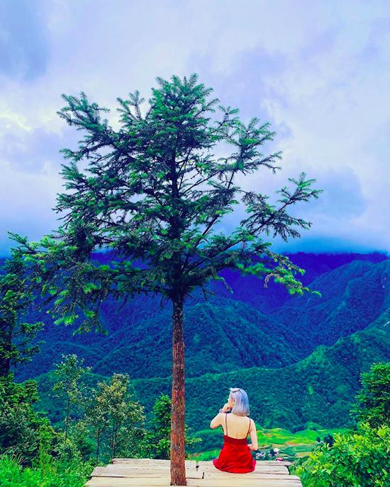 Đà Lạt có khá nhiều địa điểm mang tên cây thông cô đơn được khách du lịch tìm tới tham quan. Lan Phương lựa chọn cây thông gần đồi Thiên Phúc Đức, chỗ ngồi lơ lửng trên cao, nhìn ra bốn bề núi non hùng vĩ.