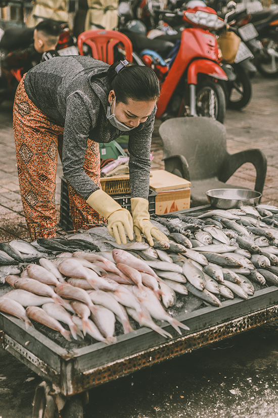 Khu chợ cá đầy ắp hải sản, cá, tôm, mực, ốc... tươi sống vừa được đánh bắt.