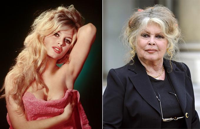 Brigitte Bardot từng được mệnh danh là Marilyn Monroe của màn ảnh Pháp những năm 50 và 60 của thế kỷ trước. Bà chinh phục khán giả khắp thế giới với khả năng diễn xuất thiên bẩm và những vai diễn gợi cảm. Sau đó, khi đang ở đỉnh cao sự nghiệp, Brigitte đột ngột từ giã phim ảnh. Nhiều năm qua, bà trở thành nhà hoạt động xã hội tích cực đấu tranh vì quyền sống của động vật. Brigitte Bardot, hiện 86 tuổi, từng chiến thắng căn bệnh ung thư vú và đang tận hưởng tuổi già an yên bên người chồng thứ tư.