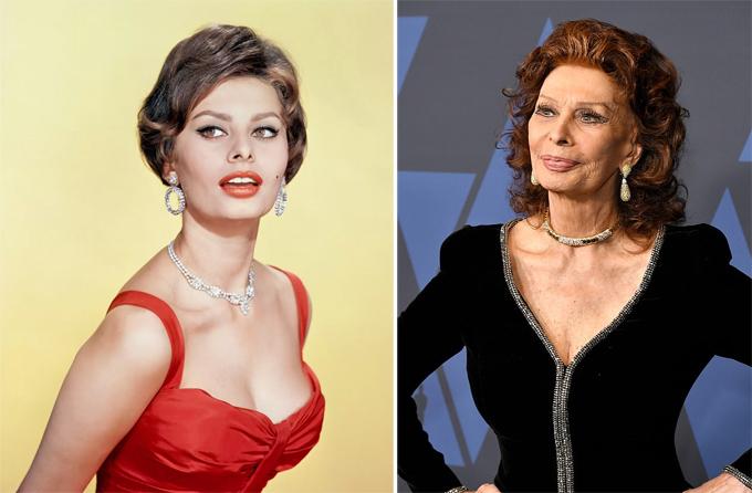 Sophia Loren là ngôi sao huyền thoại của điện ảnh Italy và một trong những nữ diễn viên vĩ đại nhất của màn ảnh kinh điển Hollywood. Dung nhan mỹ miều với đôi mắt mèo sắc sảo đưa Sophia trở thành một biểu tượng nhan sắc của thế giới. Bà cũng hớp hồn biết bao khán giả thập niên 1960, 1970 với diễn xuất mê hoặc. Sophia từng đoạt hai giải Oscar, 7 giải Quả cầu vàng. Sau 11 năm giải nghệ, năm 2020, nữ diễn viên 86 tuổi trở lại với bộ phim của Netflix The Life Ahead do con trai bà là Edoardo Ponti làm đạo diễn.