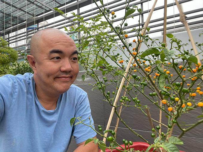 Diễn viên Quốc Thuận có cây ớt toàn quả là quả sai cành.