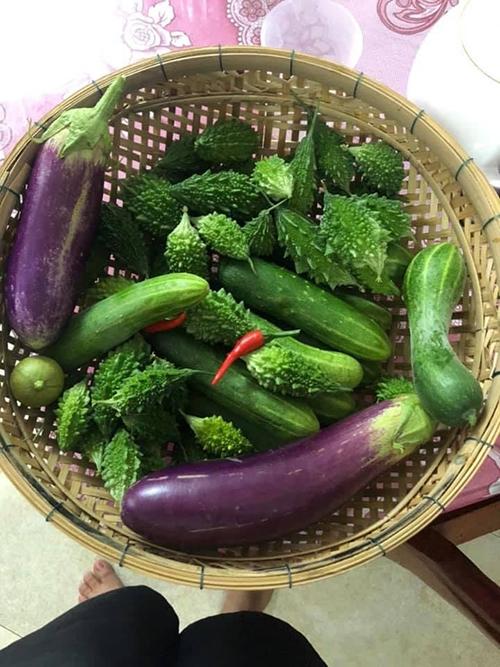 Chị Quỳnh Hương rất vui vì thành quả thu về, có được các bữa ăn ngon, chất lượng và đảm bảo an toàn cho gia đình, đặc biệt trong mùa Covid-19. Do nhà nhiều rau củ ăn không hết nên chị còn đem cho người thân, bạn bè nhiều.