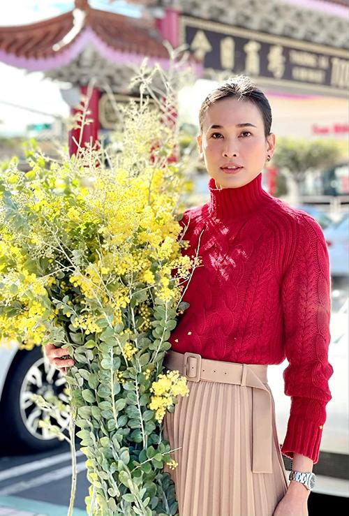 Nhan sắc của hoa hậu Dương Mỹ Linh ở tuổi 36. Sau gần 7 năm qua Mỹ, cô có cuộc sống bình yên bên bạn trai Việt kiều nhưng kín tiếng trước truyền thông, đặc biệt là trong chuyện đời tư.