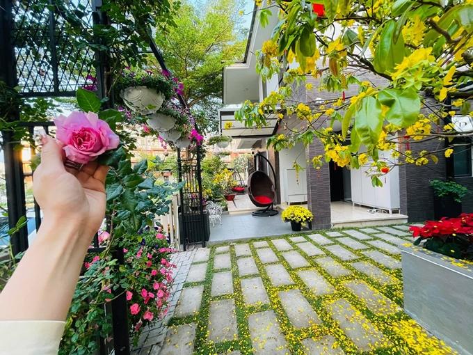 Nhật Kim Anh nâng niu những cánh hồng trong vườn.