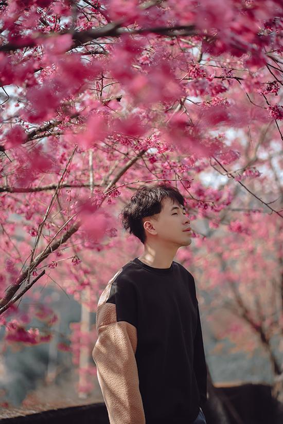 Hoa anh đào Đài Loan - 6