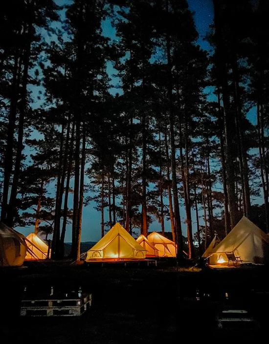 Tối đến, nhân viên khu camping sẽ đốt lửa trại để du khách vừa sưởi ấm, nướng khoai, vừa quây quần bên nhau nói chuyện, nghe nhạc và chill giữa không gian núi rừng trong lành.