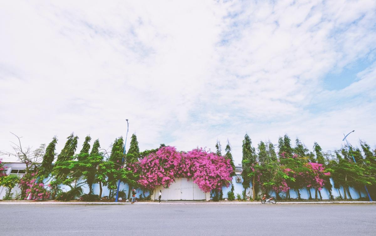 Bạn chạy xe tới số 181 Thùy Vân, ngay khu vực Bãi Sau sẽ thấy một đường rẽ.