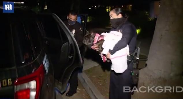 Cảnh sát giải cứu chú chó còn lại của Lady Gaga.
