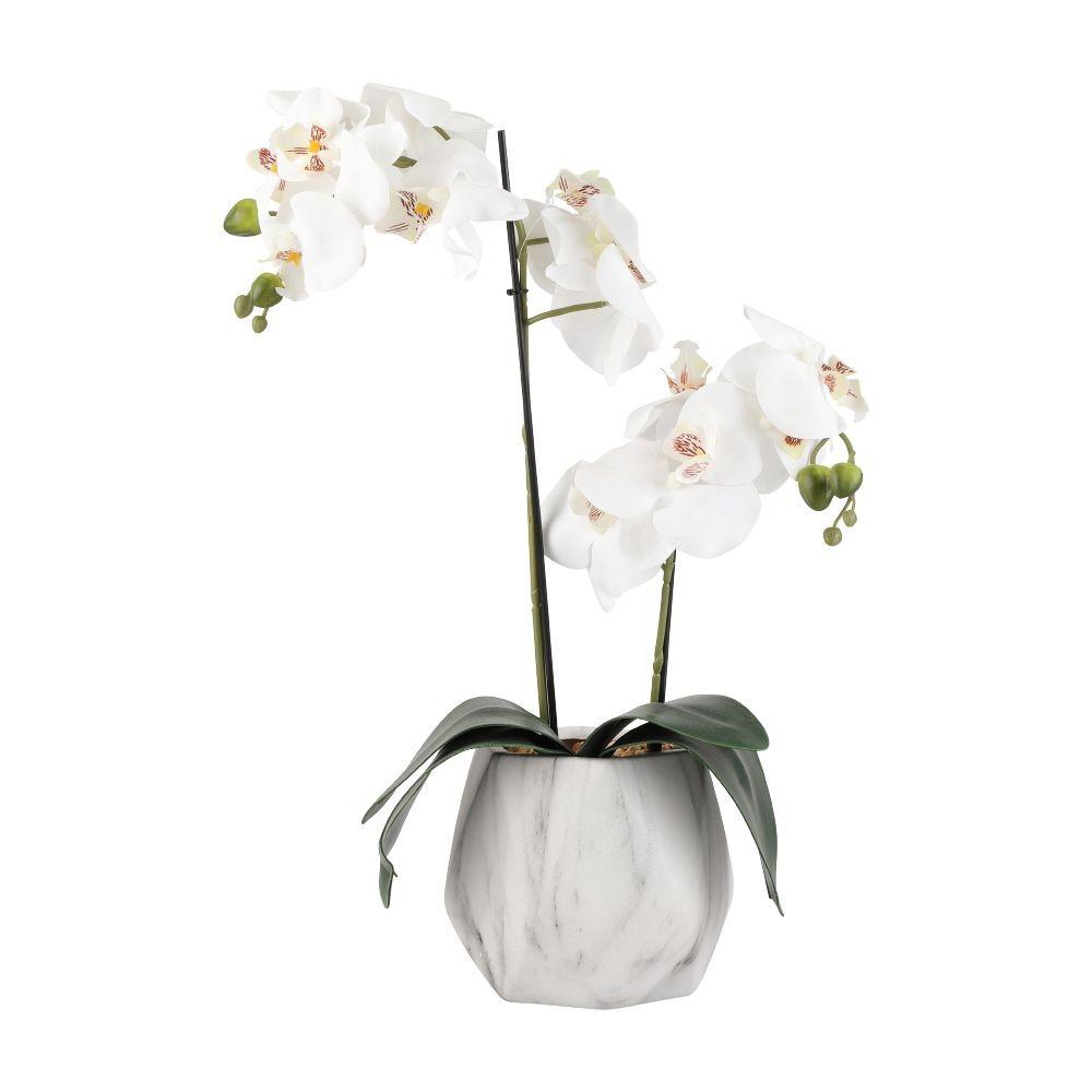Thêm một mẫu cây giả dùng trang trí nhà là chậu hoa lan Falena Index Living Mall. Hoa lan cần được chăm sóc cẩn thận để ra hoa và tươi tốt. Tuy nhiên với những gia đình bận rộn hoặc có con nhỏ thì chậu hoa Falena sẽ là lựa chọn phù hợp vì không cần tưới mà vẫn có công dụng trang trí tương tự. Sản phẩm có giá 801.000 đồng, giảm 10% so với giá gốc.