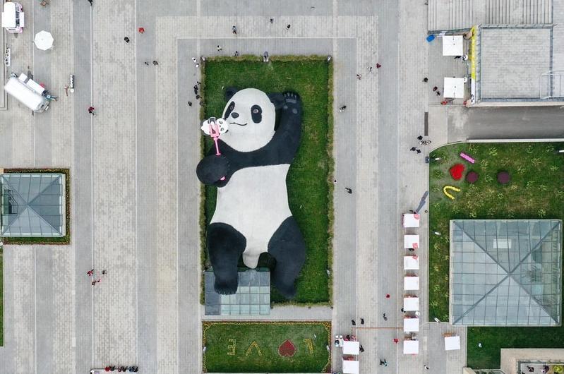 Đầu tháng 4, bức tượng có tên Selfie Panda của nghệ sĩ người Hà Lan Florentijn Hofman trở thành điểm check in hot ở Trung Quốc. Đây là dự án mới nhất của cha đẻ Rubber Duck (Chú vịt vàng khổng lồ) từng gây sốt khắp thế giới từ 2007 đến 2014. Lần xuất hiện cuối của vịt vàng là tại Sài Gòn, hút hàng nghìn du khách.