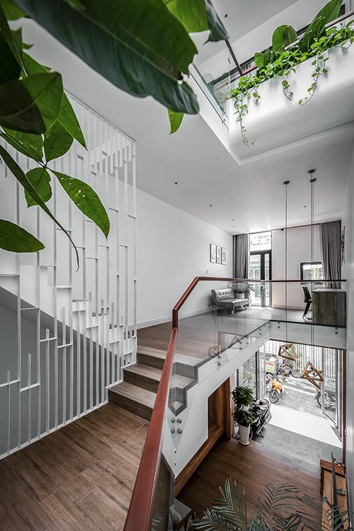 Các ngóc ngách của ngôi nhà đều có điểm nhấn cây xanh để xoá đi sự ngột ngạt.