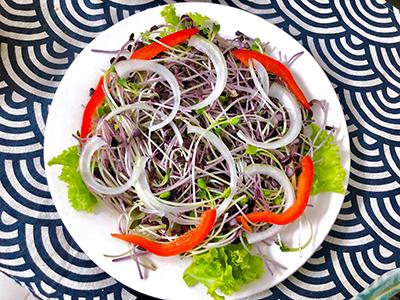 Salad rau mầm thịt bò - 4