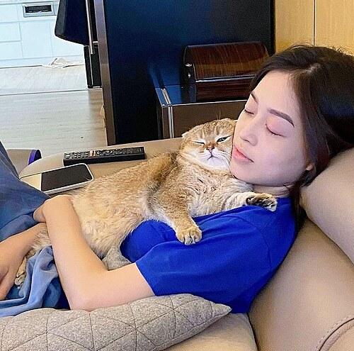 Á hậu Phương Nga khoe được mèo cưng nằm chăm sóc khi cô bị đau mắt.