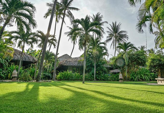 Resort được phủ một màu xanh ngắt như những khu rừng nhiệt đới. Từ đây, du khách có thể di chuyển tới suối nước Mũi Né, đồi Cát Vàng, đồi Cát Trắng, suối Tiên, hải đăng Kê Gà. Đặc biệt, giá cả resort này thuộc phân khúc giá bình dân, từ 2.700.000 đồng/phòng/đêm.