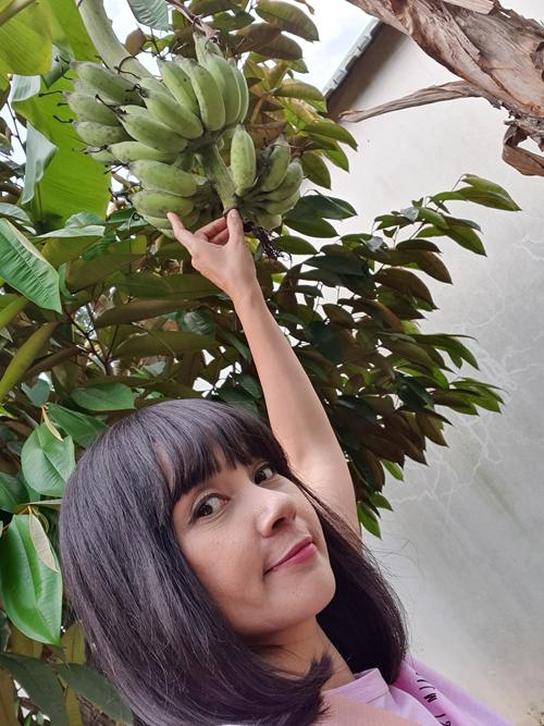 Mỗi khi nhìn cây cối trổ trái, Việt Trinh đều cảm thấy hạnh phúc vì thành quả vun trồng, chăm sóc cây được đền đáp. Cô gọi trái cây, các loại rau xanh trong vườn là món quà của thiên nhiên.