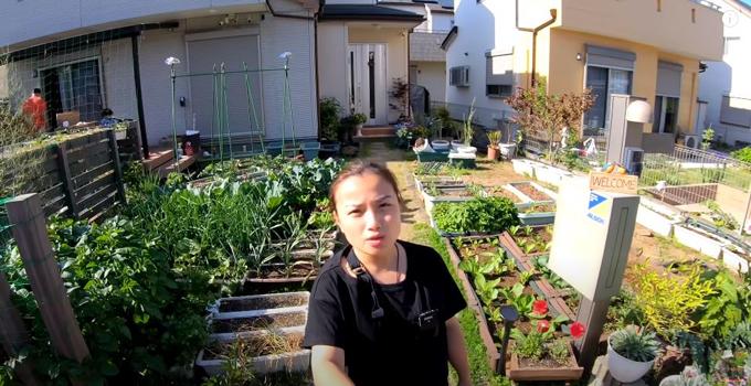 Quỳnh Trần tận dụng khoảng sân trống trước nhà để trồng đủ loại cây. Do có kinh nghiệm trồng trọt lâu năm nên vườn của cô luôn có rau sạch, hoa thơm.