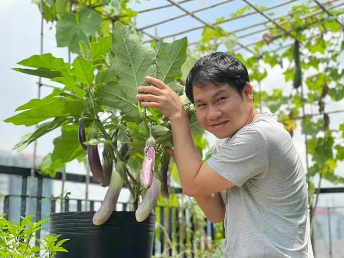 Cà tím lúc lỉu quả trên khu vườn sân thượng nhà ca sĩ Trọng Tấn.
