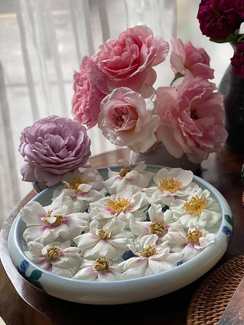 Hoa hồng khi gần tàn được chị thả vào bát nước để mang đến hương thơm thoang thoảng cho cả căn phòng.