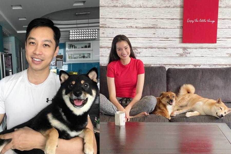 Chưa kể, dù dị ứng lông chó, John Từ vẫn đồng ý để vợ nuôi nhiều chú chó làm bạn. Yêu và bên nhau suốt 8 năm, tính cách ấy vẫn luôn như thế, yêu thương vợ hết mực. Tôi may mắn và hạnh phúc vì lấy được anh, người đẹp cho hay.