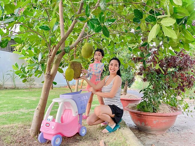 MC Ốc Thanh Vân và con gái thu hoạch mít sạch nhà trồng.