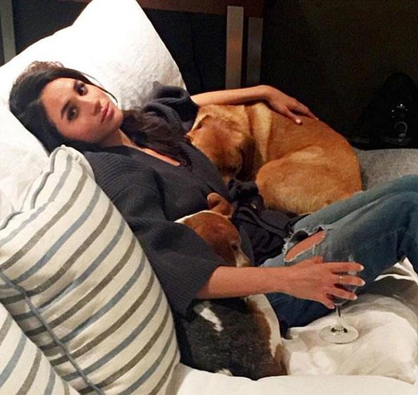 Meghan bên chó cưng khi còn đóng phim ở Toronto. Ảnh: Instagram.