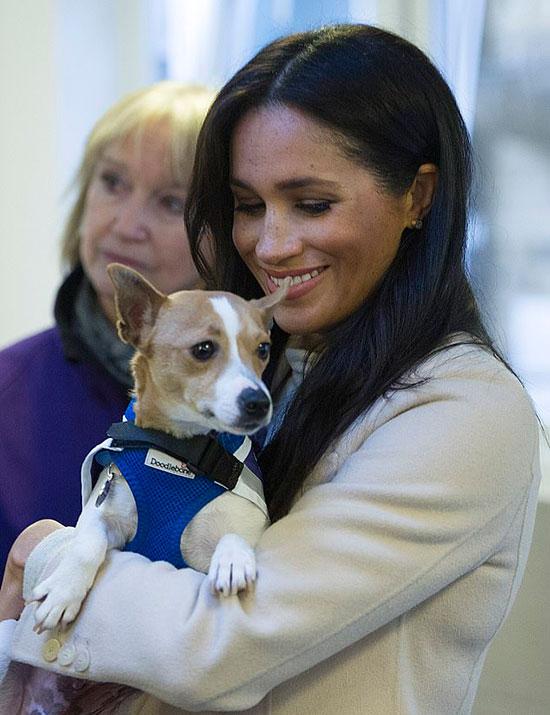 Meghan thăm trung tâm bảo trợ động vật Mayhew hồi tháng 1/2020. Ảnh: AP.