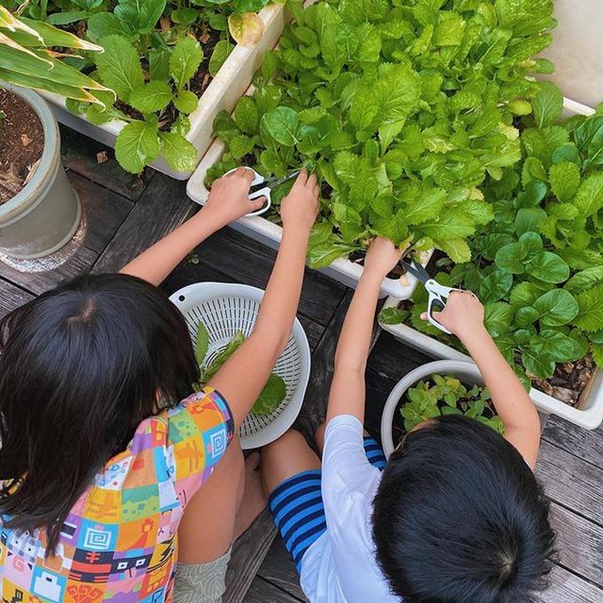 Tăng Thanh Hà còn sở thích khác là chăm vườn tại các khoảng đất trống trong nhà và truyền đi tình yêu thiên nhiên, sống có trách nhiệm cho các con. Cô hướng con đến các trải nghiệm thực tế để rèn cho bé tính tự lập từ nhỏ. Mỗi ngày, hai bé Richard và Chloe trở thành phụ tá đắc lực của mẹ trong việc chăm vườn. Hai em thường phụ mẹ tưới cây, rất thích được thu hoạch lứa rau do chính tay mình cùng mẹ trồng.