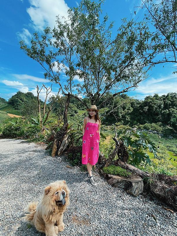 Toàn bộ resort được xây dựng trên bãi đá tai mèo – loại đá phổ biến ở Hà Giang - trên địa hình hơi dốc, thoai thoải men theo đỉnh đồi, mang tới nhiều góc ảnh sống ảo.