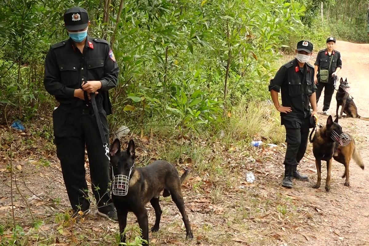 Chó nghiệp vụ được huy động hỗ trợ việc truy bắt. Ảnh: Quang Văn