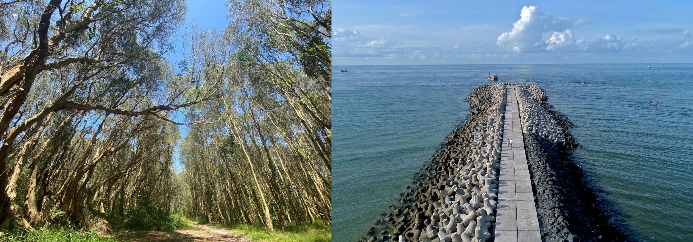 Hồ Tràm nổi tiếng với những bãi tắm trong xanh, được CNNGO bình chọn là một trong những bãi biển hoang sơ đẹp nhất thế giới. Ngoài ra, hệ sinh thái rừng - biển được bảo tồn nguyên vẹn góp phần kiến tạo mảng xanh tự nhiên cho nơi đây.