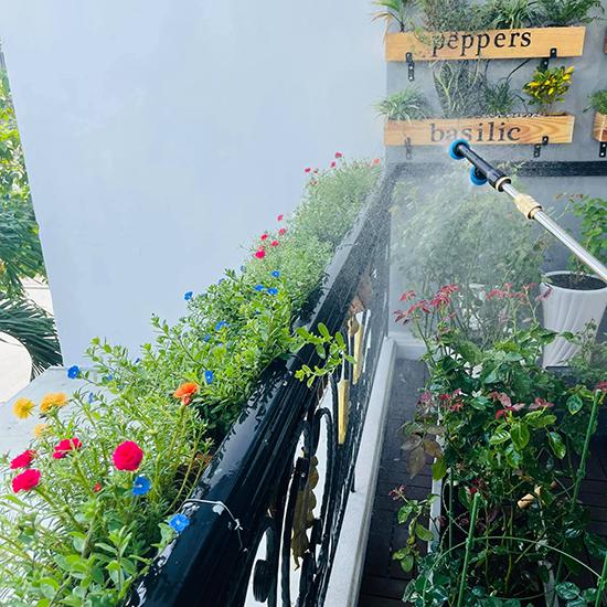 Sau nhiều lần trồng cây không thành công ở nhà cũ vì lan can thiếu nắng và ít có thời gian chăm sóc vì bận rộn công việc, Hồ Bích Trâm quyết tâm phục thù. Cô duy trì tưới nước hai ngày mỗi lần, tỉa lá úa thường xuyên.