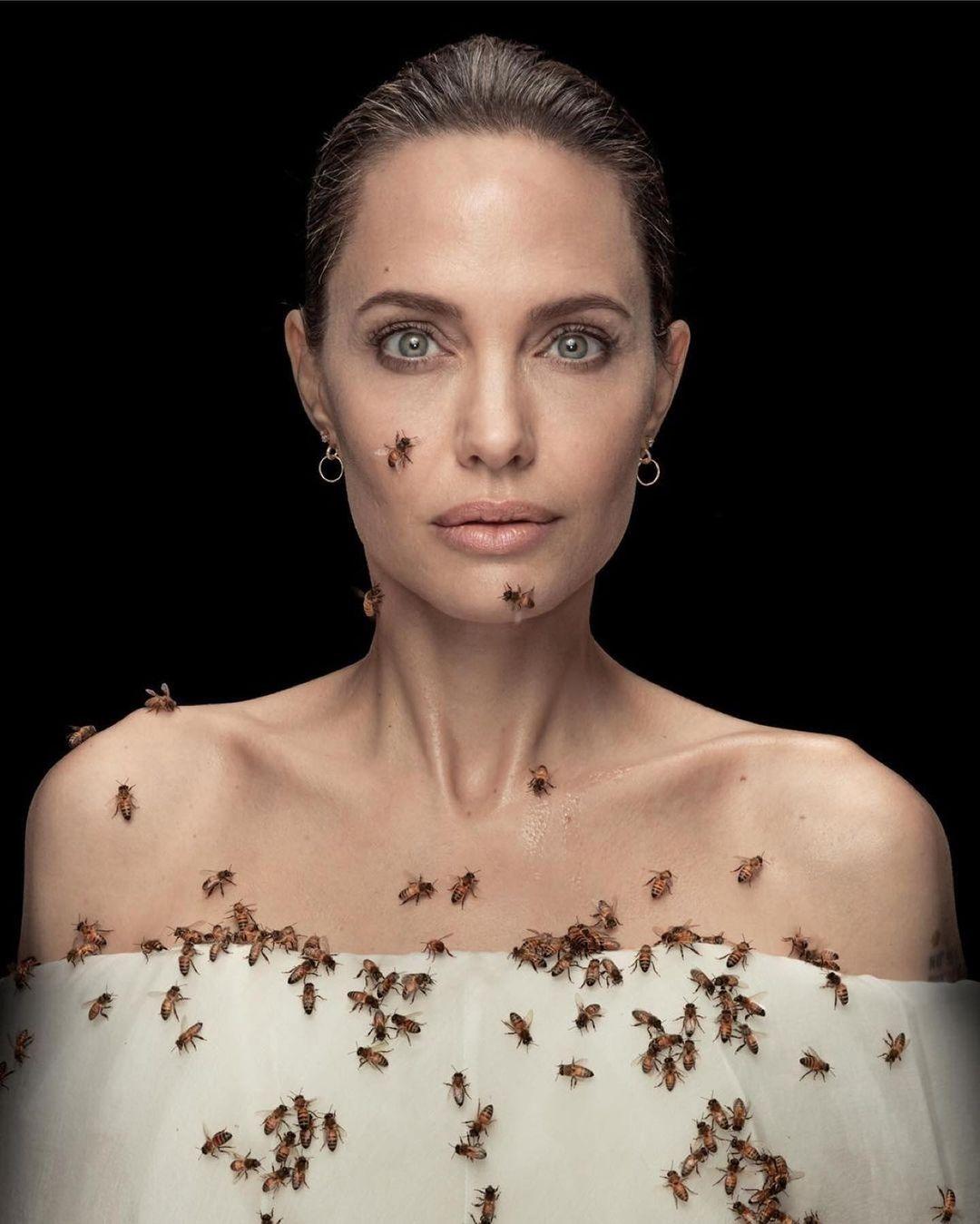 Angelina Jolie chụp ảnh với đàn ong nhân Ngày Ong Thế giới.