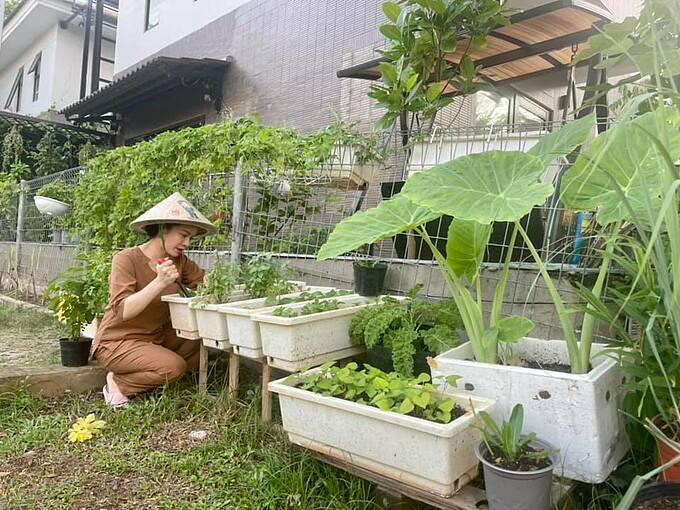 Ca sĩ - diễn viên Nhật Kim Anh chăm chỉ làm vườn, chăm hoa trong thời gian giãn cách xã hội.
