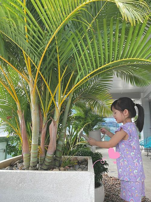 Hoa hậu Đặng Thu Thảo hạnh phúc giản đơn khi ngắm con gái tưới cây.