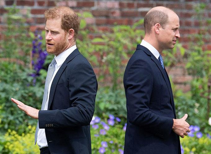 Harry và WIlliam trong lễ dựng tượng Diana ở Điện Kensington hôm 1/7. Ảnh: AFP.