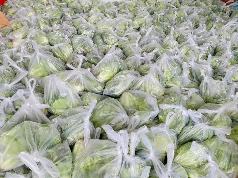 Vợ chồng Thủy Tiên ủng hộ hàng tấn rau củ - 4