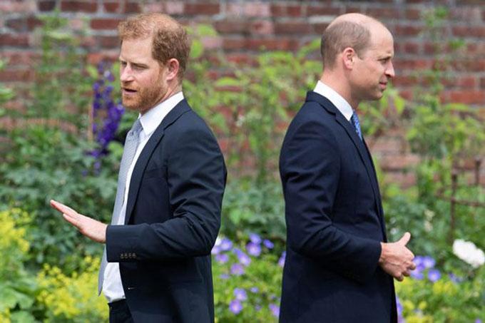 Hoàng tử Harry và WIlliam ở lễ khánh thành tượng Diana, London, hôm 1/7. Ảnh: AFP.