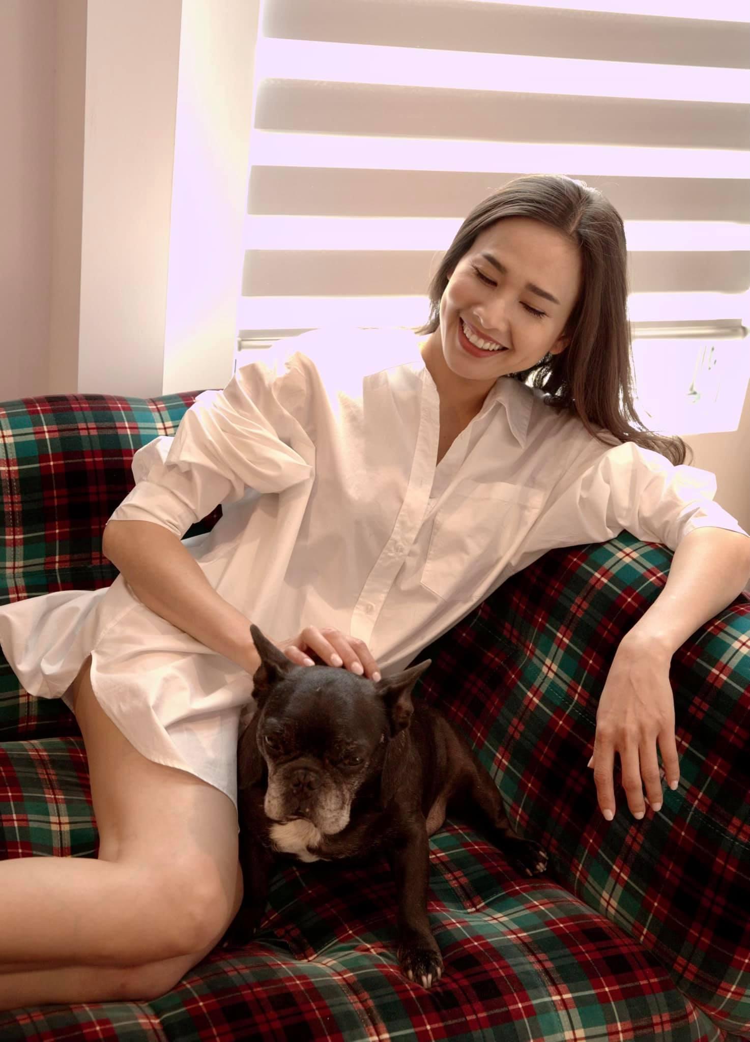 Nhiều năm qua, Dương Mỹ Linh rút lui khỏi showbiz, sang Mỹ định cư và tiếp tục phát triển sự nghiệp. Năm 2020, người đẹp thử sức kinh doanh một tiệm phở hương vị Bắc và ược nhiều thực khách trong đó có không ít nghệ sĩ Việt tại hải ngoại ủng hộ.