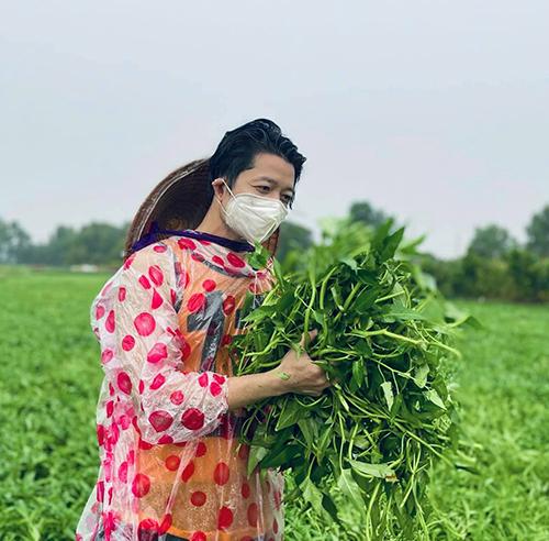 Nhà thiết kế Thuận Việt thức khuya, dậy sớm, mặc nắng mưa để thu hoạch rau muống và vận chuyể, tặng cho người dân TP HCM.