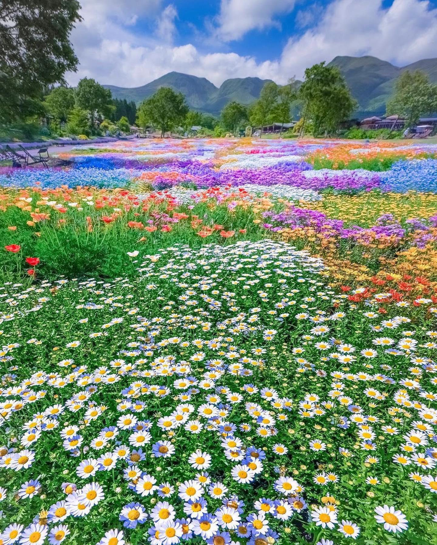 Để kéo du khách tới đây, ban quản lý công viên còn tổ chức nhiều hoạt động như lễ hội hoa theo mùa, các thực đơn trải nghiệm với nhiều đặc sản địa phương, được trồng ngay tại vùng đất này, để mọi người có thể lưu lại đây cả ngày.