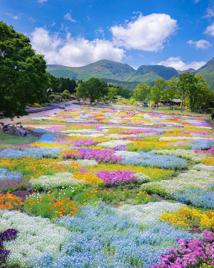 Công viên nằm dưới chân dãy núi Kuju, nơi có vị trí khá cao nên thời tiết ở đây quanh năm mát mẻ ngay cả trong mùa hè nóng bức. Tuy nhiên, nhiệt độ ở Kuju luôn thấp hơn nhiệt độ trung bình ở Nhật khoảng 5 độ C, cộng với khí hậu nắng nhiều, thích hợp cho nhiều loài hoa sinh sôi, nở rộ đúng mùa.