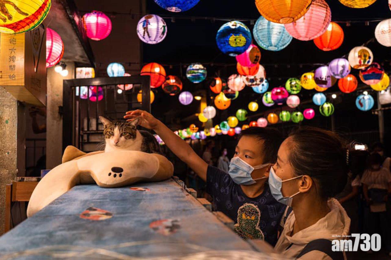 Lễ hội đèn lồng Tai O sẽ thắp sáng mỗi đêm từ 18h30 đến 21h30 để đón khách tham quan và sẽ kéo dài tới tận ngày 30/9, tức là sau cả lễ Trung thu. Chú mèo trắng - xám nổi tiếng ở Tai O của một cửa tiệm ven đường. Khá đông du khách tới đây chỉ để gặp gỡ nhân vật đặc biệt này.