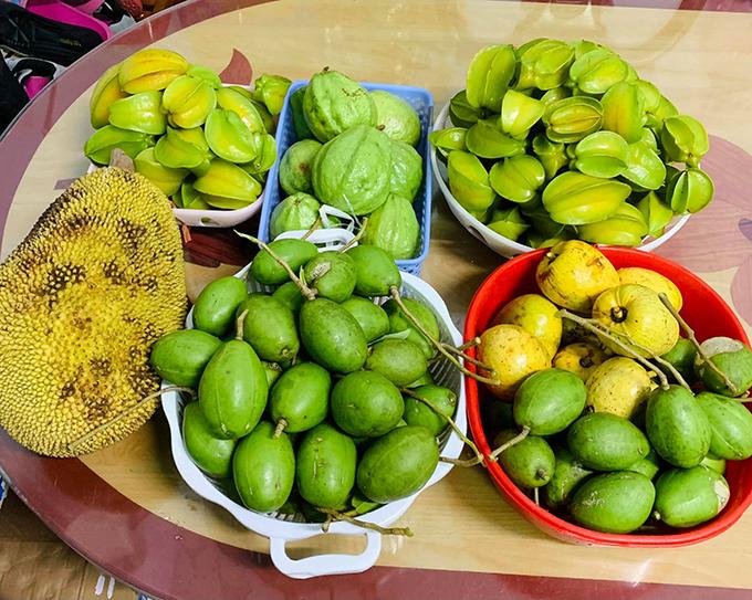 Tới kỳ thu hoạch cây trái, chị Như thường đem chia bớt cho bà con trong gia đình và mọi người đều thích thú khi được thưởng thức thực phẩm sạch từ vườn nhà.