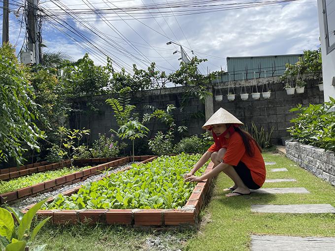 Tuy việc chăm nom vườn cực nhưng cặp vợ chồng không gặp mấy khó khăn vì mê mô hình biệt thự vườn, thích được trải nghiệm việc tự cung tự cấp thực phẩm sạch.