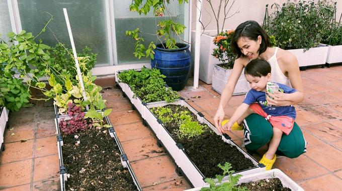 Phương Mai dạy con nhỏ - bé Henryk cách gieo hạt. Tôi gieo hạt theo cảm hứng, sở thích mỗi ngày, đúng theo tiêu chí thích gì trồng nấy, Phương Mai nói. Cô thường làm đất đủ ẩm, xới rồi gieo hạt mà không cần ngâm, ủ nảy mầm.