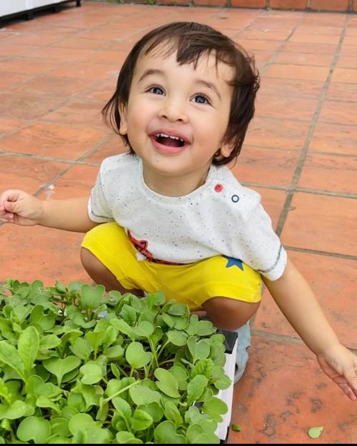 Chăm vườn cũng là hoạt động vui chơi của gia đình mỗi ngày và qua đó, cô muốn dạy con về tình yêu thiên nhiên, cây cỏ.
