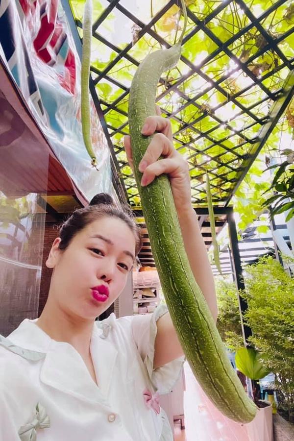 Nhật Kim Anh thu hoạch mướp trồng tại nhà. Cô hiện sống cùng mẹ tại một căn biệt thự ở Sài Gòn.