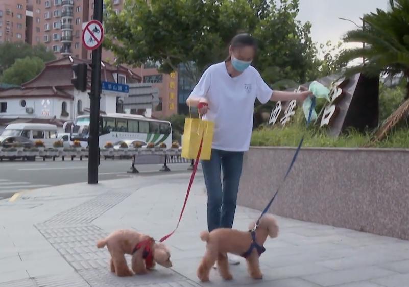 Một mình dắt chó đi dạo còn thú vị hơn quay một chương trình không hay, Lưu Tuyết Hoa nói.